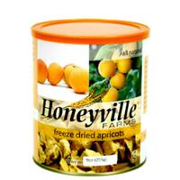 Freeze Dried Apricots LARGE CAN